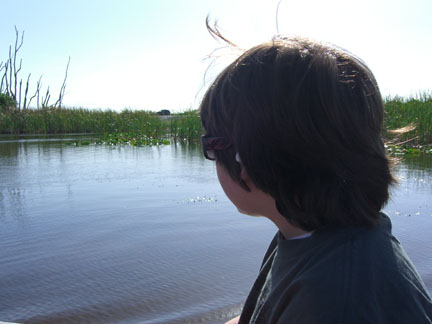 View from airboat