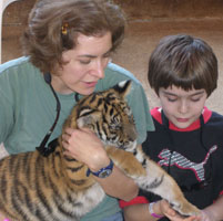 Playing with a tiger cub