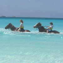 Horseback riding in the Caribbean